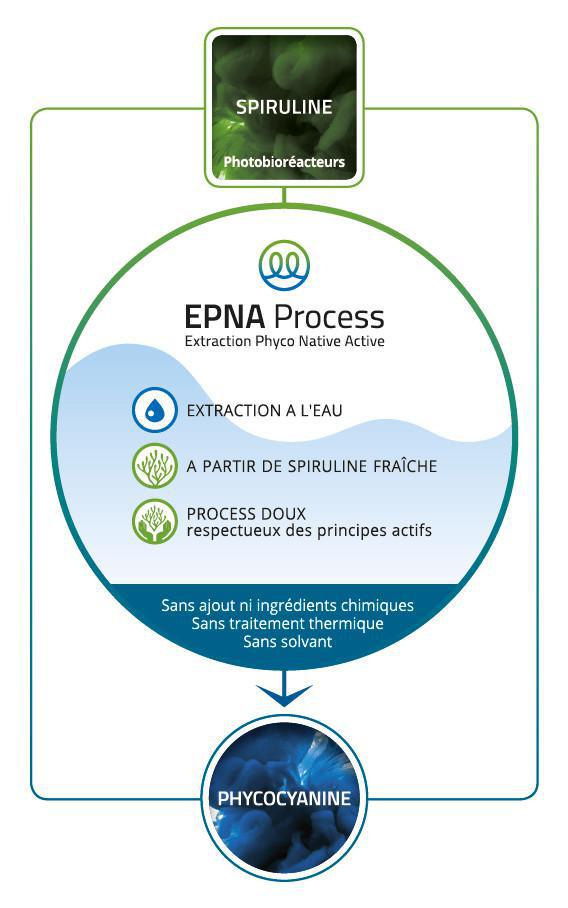 Le procédé d'extraction EPNA (Extraction Phyco Native Active)